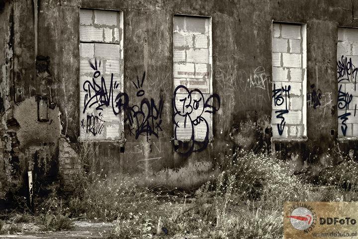 2012_09_dobromiry-07