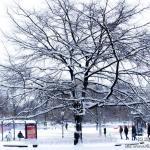 2012_szczecin_zima-02