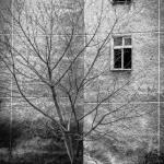Szczecin :: Obrońców Stalingradu :: 38