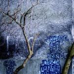 Szczecin :: Obrońców Stalingradu :: 42