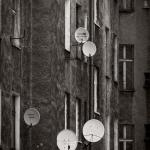 Szczecin :: Obrońców Stalingradu :: 48