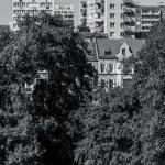 lipiec 2013 w Szczecinie 18