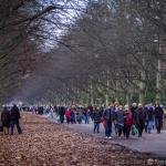 Szczecin - Dzień Wszystkich Świętych 2013 10