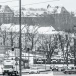 Szczecin styczeń 2014 :: 22