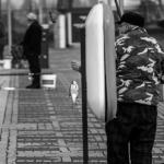 Szczecin 2014.03 059