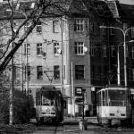 Szczecin 2014.03 112
