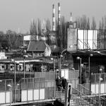 Szczecin 2014.03 122