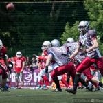 Husaria vs Cougars :: 15