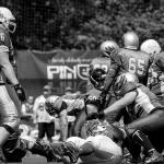 Husaria vs Cougars :: 27