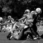 Husaria vs Cougars :: 37
