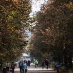 2014_10_Szczecin17