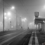 Grudzień 2014 w Szczecinie 06