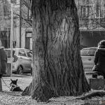 Szczecin - luty 2015 :: 40