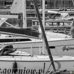 2015 06 10-16 The Baltic Tall Ships Regatta :: 045