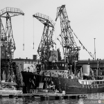 2015 06 10-16 The Baltic Tall Ships Regatta :: 052