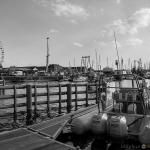 2015 06 10-16 The Baltic Tall Ships Regatta :: 061