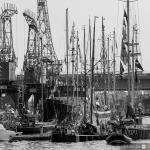 2015 06 10-16 The Baltic Tall Ships Regatta :: 063