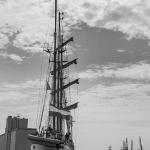 2015 06 10-16 The Baltic Tall Ships Regatta :: 155