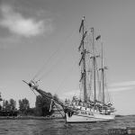 2015 06 10-16 The Baltic Tall Ships Regatta :: 157