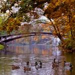 Szczecin n a co dzień :: 2012-10-23