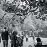 Szczecin Jesień 2013 :: 22