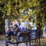 Szczecin Jesień 2013 :: 25