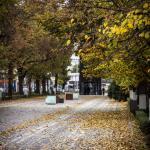 Szczecin Jesień 2013 :: 37