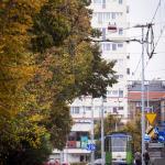 Szczecin Jesień 2013 :: 38