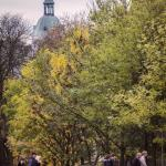 Szczecin Jesień 2013 :: 45