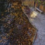 Szczecin Jesień 2013 :: 54