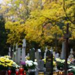 Cmentarz Centralny w Szczecinie 02