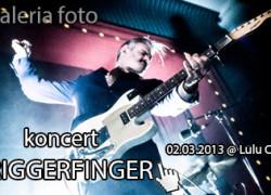 IW pfoto_2013_03_triggerfinger