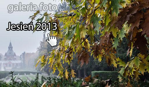 Szczecin. Fotoreportaż. Szczecińska jesień 2013 w obiektywie [aktualizacja 05.11.2013]
