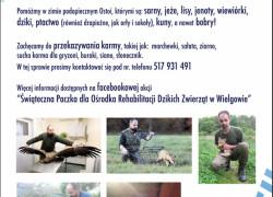 Ośrodek Rehabilitacji Dzikich Zwierząt w Wielgowie, Michał Kudawski, pomoc dla zwierząt