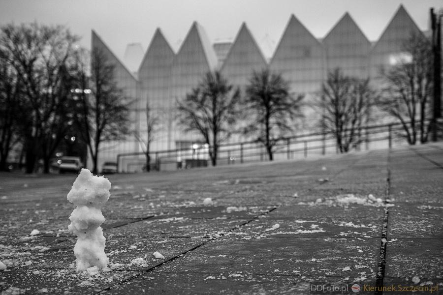 """Szczecin. miniFOTOREPORTAŻ. 21.01.2015. """"Trudny"""" Bałwanek @ Pl. Solidarności"""