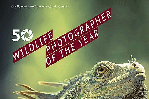 Szczecin, Muzeum Narodowe, wystawa fotografii, kierunek Szczecin, Fotografia Dzikiej Przyrody 2014, Wildlife Photographer of the Year, w Szczecinie