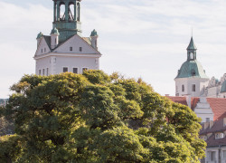 kierunek szczecin, szczecin na co dzień, fotografie szczecina, zdjęcia szczecina, 09.10.2015, Zamek Książąt Pomorskich