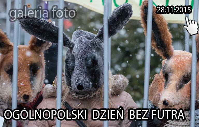 Szczecin. FOTOREPORTAŻ. 28.11.2015. Happening Ogólnopolski Dzień bez Futra @ Pl. Żołnierza