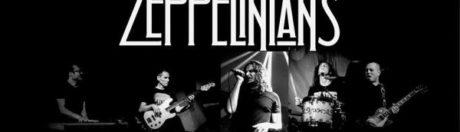 Zeppelinianas, koncerty w Szczecinie