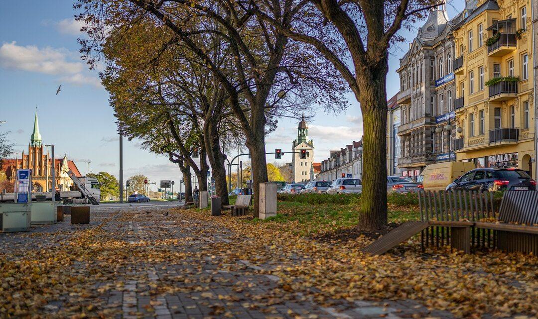 Fotografia. Szczecin na co dzień 03.11.2020. Aleja Kwiatowa w Szczecinie