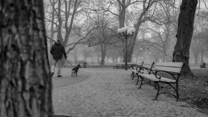 Fotografia. Szczecin na co dzień 02.03.2021. Park generała Władysława Andersa w Szczecinie