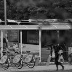 11.08.2016 Szczecin na co dzień, galeria zdjęć Szczecina